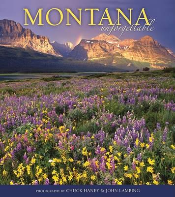 Montana Unforgettable book