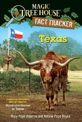 Texas by Natalie Pope Boyce