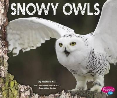 Snowy Owls book