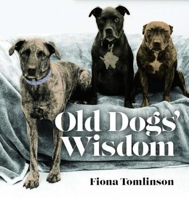 Old Dog Wisdom by Fiona Tomlinson