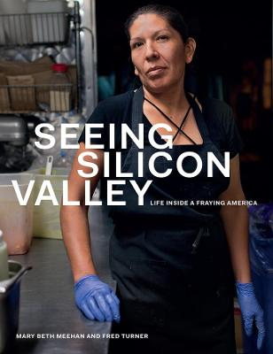 Seeing Silicon Valley: Life Inside a Fraying America by Mary Beth Meehan