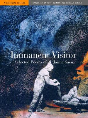 Immanent Visitor book