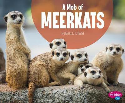 A Mob of Meerkats by Martha E H Rustad