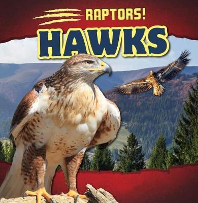 Hawks by Matthew Bates