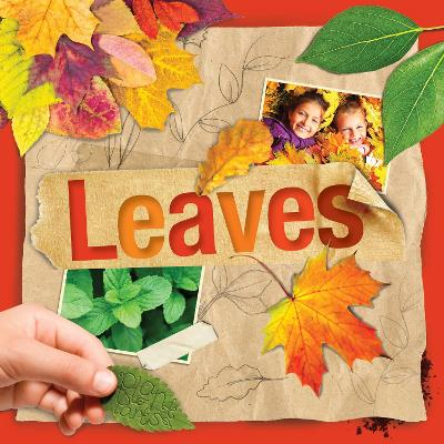 Plant Parts: Leaves by Steffi Cavell-Clarke