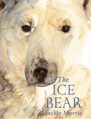 The Ice Bear Mini Edition by Jackie Morris