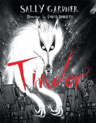 Tinder book