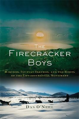 Firecracker Boys book