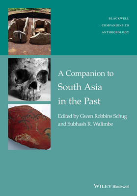 A Companion to South Asia in the Past by Gwen Robbins Schug