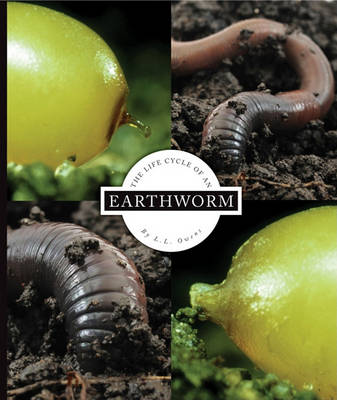 The Life Cycle of an Earthworm by L L Owens