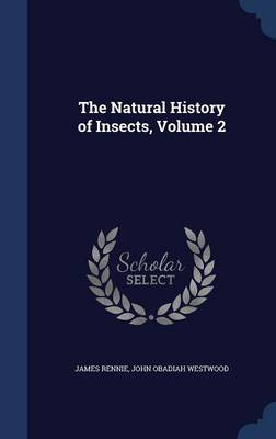 The Natural History of Insects; Volume 2 by James Rennie