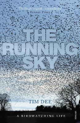 Running Sky book