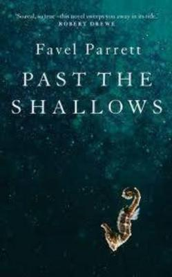 Past the Shallows by Brigid Kemmerer
