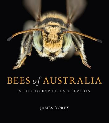 Bees of Australia: A Photographic Exploration by James Dorey