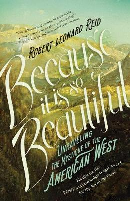 Because It Is So Beautiful book
