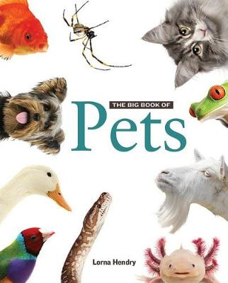 Big Book of Pets by Lorna Hendry