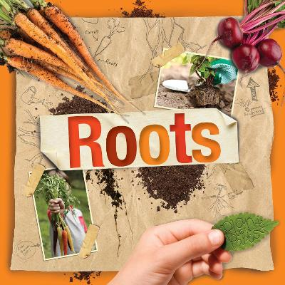 Plant Parts: Roots by Steffi Cavell-Clarke