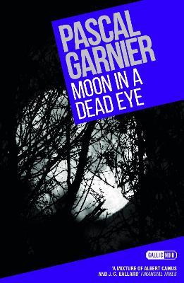 Moon in a Dead Eye by Pascal Garnier