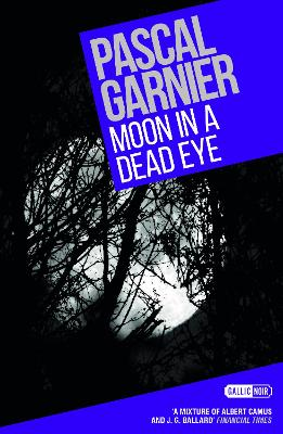 Moon in a Dead Eye by Pascal Garnier
