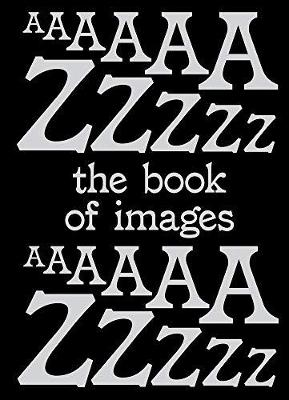 Book of Images: An illustrated dictionary of visual experiences by Stefano Stoll
