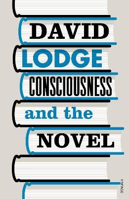 Consciousness And The Novel book