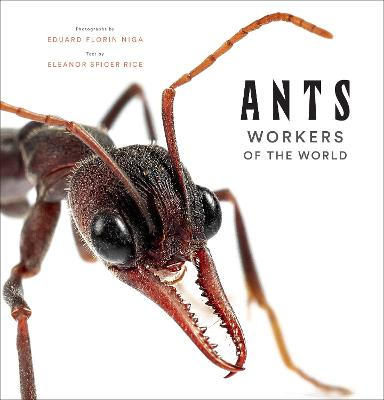 Ants: Workers of the World book