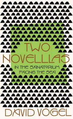 Two Novellas: In the Sanatorium and Facing the Sea by David Vogel