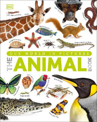 Animal Book by DK