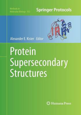 Protein Supersecondary Structures by Alexander E. Kister