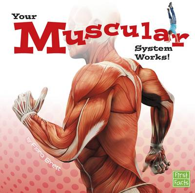 Your Muscular System Works! by Flora Brett