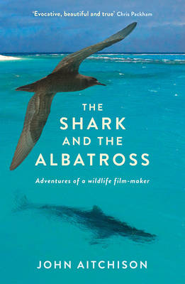 Shark and the Albatross by John Aitchison