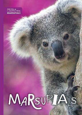 Marsupials by Madeline Tyler