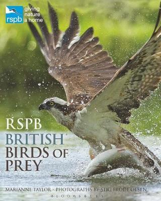 RSPB British Birds of Prey by Marianne Taylor