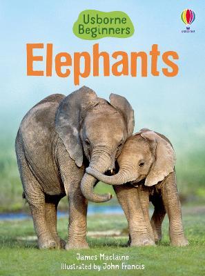 Elephants book