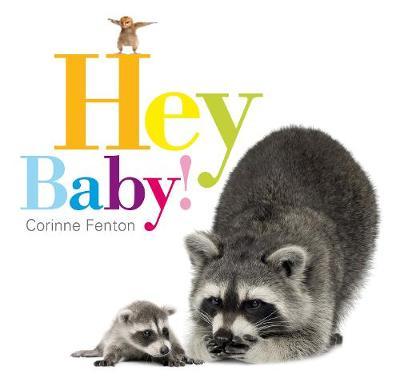 Hey Baby! book