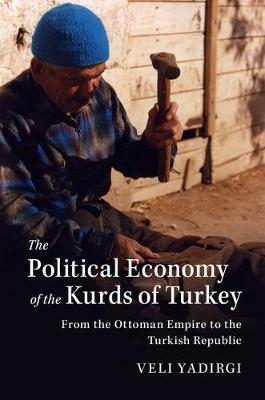 Political Economy of the Kurds of Turkey book