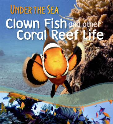 Clown Fish and Other Coral Reef Life by Sally Morgan