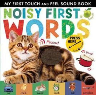 Noisy First Words: My First Touch and Feel Sound Book by Libby Walden