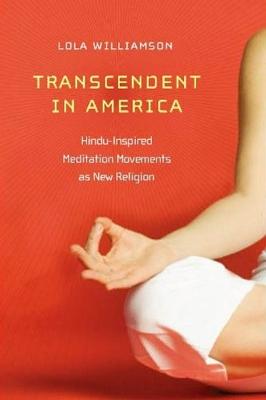 Transcendent in America book