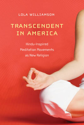 Transcendent in America by Lola Williamson