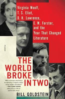 World Broke in Two book