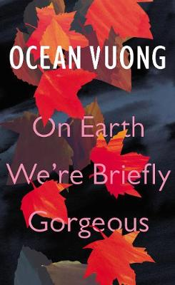 On Earth We're Briefly Gorgeous book