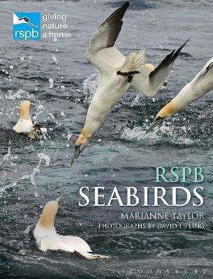 RSPB Seabirds by Marianne Taylor