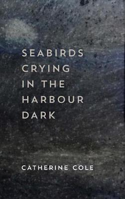 Seabirds Crying in the Harbour Dark by Catherine Cole