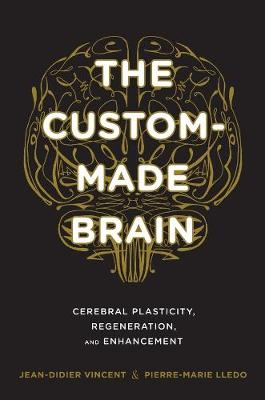 The Custom-Made Brain: Cerebral Plasticity, Regeneration, and Enhancement by Jean-Didier Vincent