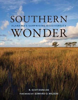 Southern Wonder by R. Scot Duncan