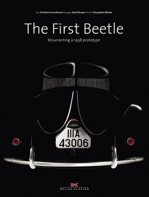 The First Beetle by Clauspeter Becker