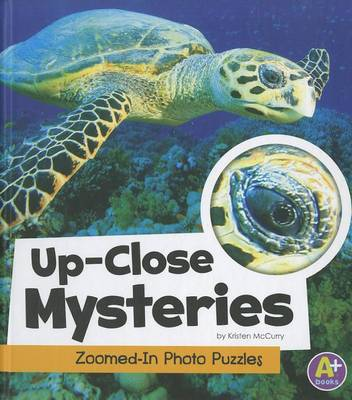 Up-Close Mysteries by Kristen McCurry