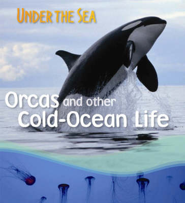 Orcas and Other Cold-ocean Life by Sally Morgan
