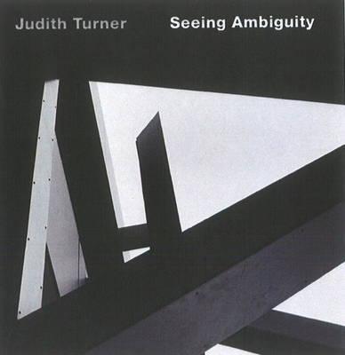Judith Turner: Seeing Ambiguity by Judith Turner